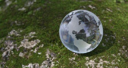 世界環境デーとは?企業のブランディングに活かしながら社会貢献するヒント